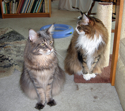 Schuyler (left) and Abigail, 2011.